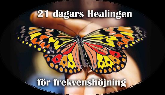 21dagarshealingbannerfaril, avrund logo fjaril